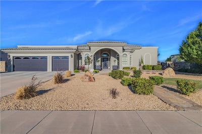 El Paso Single Family Home For Sale: 5804 Angel Street