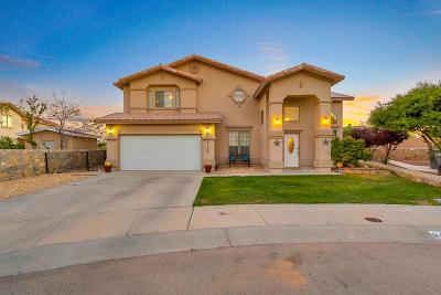 El Paso Single Family Home For Sale: 3109 Tierra Lobo