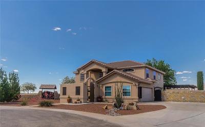 Single Family Home For Sale: 6245 Cosecha Luna