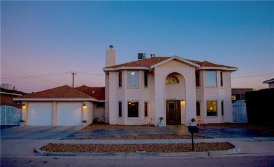 El Paso Single Family Home For Sale: 11324 Patricia Avenue