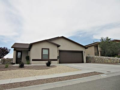 El Paso Single Family Home For Sale: 1621 Rayado Creek Lane