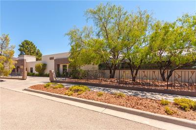 El Paso Single Family Home For Sale: 508 Canyon Springs Drive