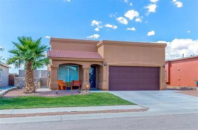 Single Family Home For Sale: 14221 Desert Bush Drive