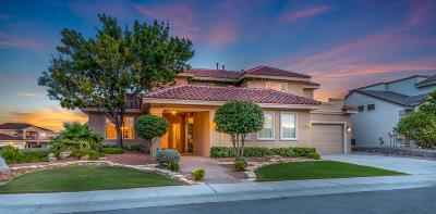 El Paso Single Family Home For Sale: 6436 Calle Placido Drive