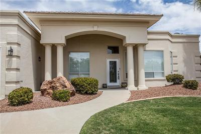 Single Family Home For Sale: 6846 Mineral Ridge Drive