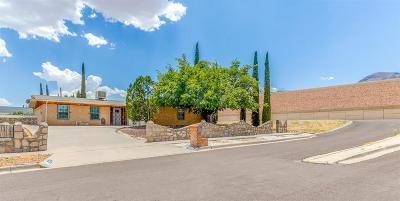 El Paso Single Family Home For Sale: 4500 Hellas Drive