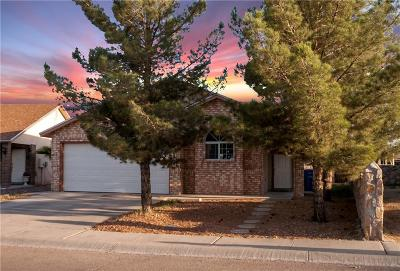 Socorro Single Family Home For Sale: 10468 Valle Suave Drive