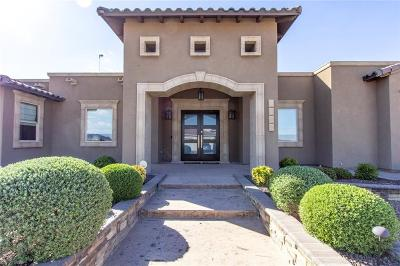Sunland Park Single Family Home For Sale: 2009 Hacienda Sol Drive