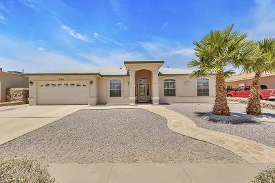 El Paso Single Family Home For Sale: 11441 Sundance Avenue