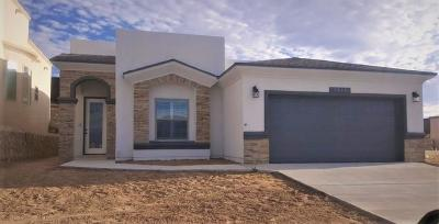 El Paso Single Family Home For Sale: 12417 Winners Circle