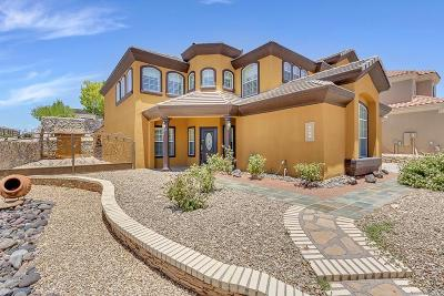 El Paso Single Family Home For Sale: 6353 Franklin Summit Drive