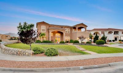 El Paso Single Family Home For Sale: 1339 Franklin Wind Place