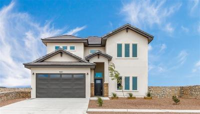 Single Family Home For Sale: 13453 Plumpton Road
