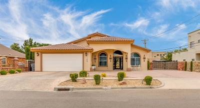 Single Family Home For Sale: 11304 Patricia Avenue