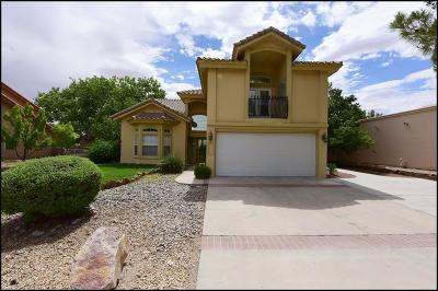 El Paso Single Family Home For Sale: 4513 Lazy Willow Drive