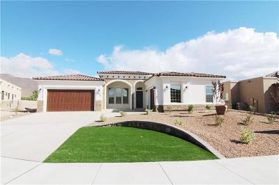 El Paso Single Family Home For Sale: 6532 Contessa Ridge
