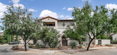 El Paso Single Family Home For Sale: 4849 Villa Encanto Drive