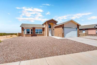 Horizon City Single Family Home For Sale: 14408 Sabio Drive