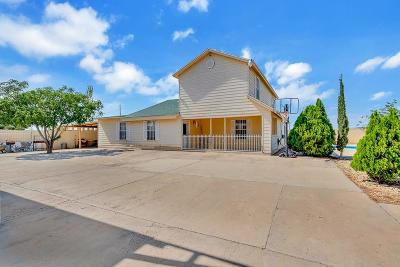 Single Family Home For Sale: 4571 Antoinette