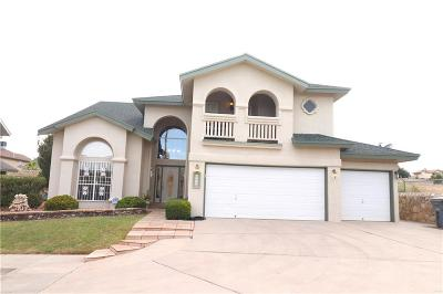 El Paso Single Family Home For Sale: 1449 Sally Ray Way