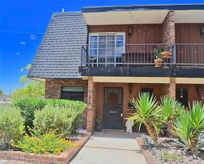 El Paso Single Family Home For Sale: 4800 Stanton Street #106