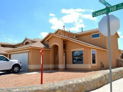 Single Family Home For Sale: 12057 Copper Hill Place