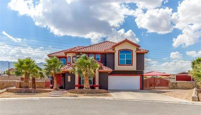 El Paso Single Family Home For Sale: 11025 Northview Drive