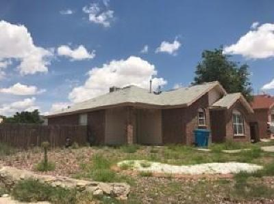 Single Family Home For Sale: 1051 Valley Ridge Drive