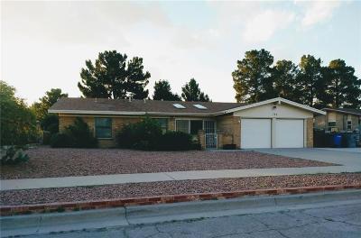El Paso Single Family Home For Sale: 764 Quinta Luz Circle