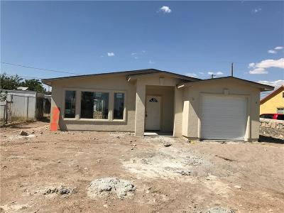 El Paso Single Family Home For Sale: 3613 Louisville Ave