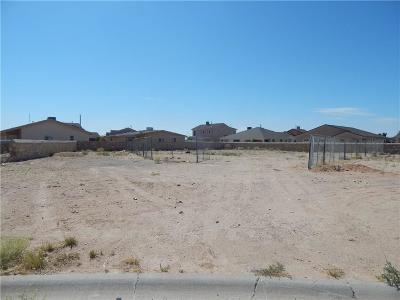 Horizon City Single Family Home For Sale: 14736 Sonoma Breeze Court