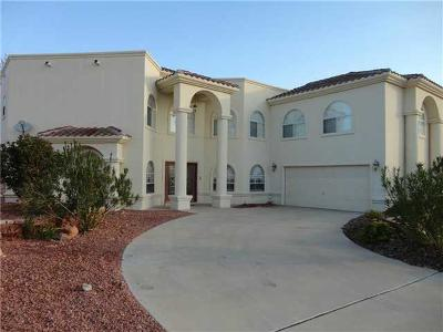 El Paso Single Family Home For Sale: 1077 Calle Milagro Drive