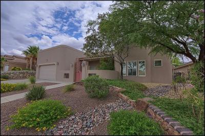 El Paso Single Family Home For Sale: 6396 Franklin Crest Drive