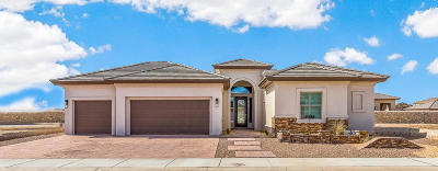 El Paso Single Family Home For Sale: 6433 Passo Via Street