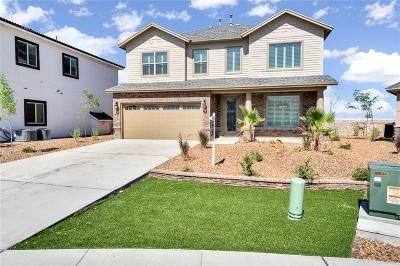El Paso Single Family Home For Sale: 7873 Enchanted View Drive