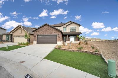 Single Family Home For Sale: 7865 Enchanted View Drive