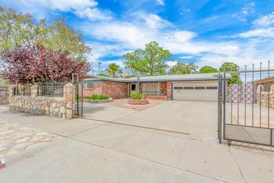 El Paso Single Family Home For Sale: 3013 Catnip Street