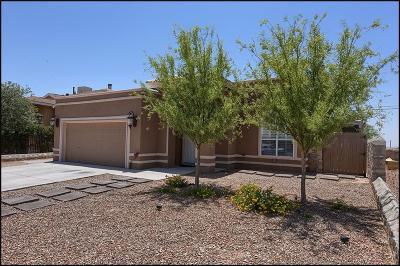 Horizon City Single Family Home For Sale: 753 Paseo Sereno Drive