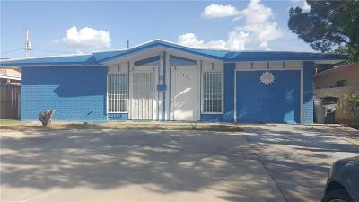 El Paso Single Family Home For Sale: 412 Kelvin Avenue