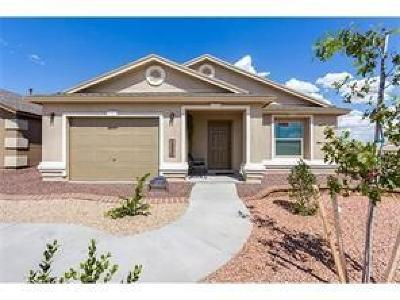 Clint Single Family Home For Sale: 13803 San Juan River Road