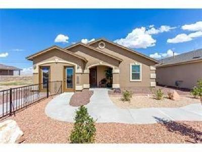 Clint Single Family Home For Sale: 13805 San Juan River Road