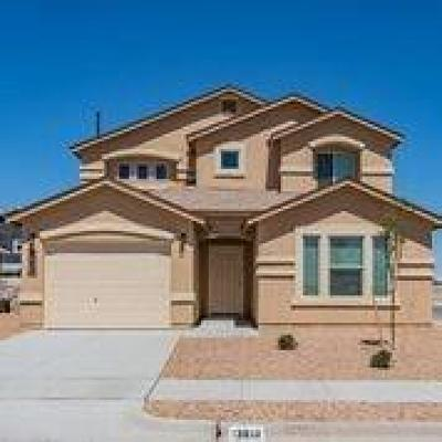 Single Family Home For Sale: 13809 San Juan River Road