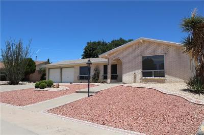 El Paso Single Family Home For Sale: 4629 El Campo Drive