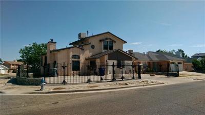 El Paso Single Family Home For Sale: 11775 Francis Scobee Drive