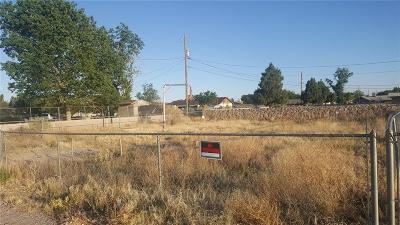 Single Family Home For Sale: 3878 Native Dancer Street