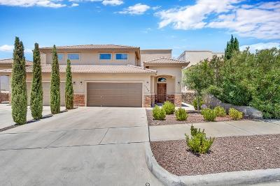 El Paso TX Single Family Home For Sale: $218,459