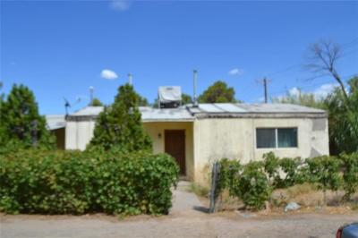 El Paso Single Family Home For Sale: 322 Santini Place