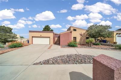 El Paso Single Family Home For Sale: 661 Skydale Drive