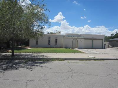 El Paso Single Family Home For Sale: 4216 Perth Drive