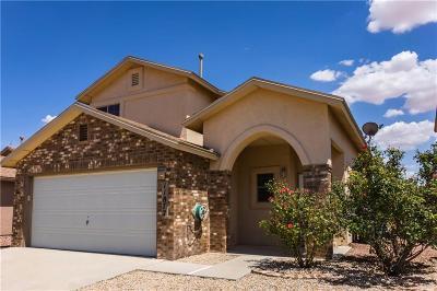 El Paso TX Single Family Home For Sale: $132,000